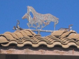 Running Horse Training and Wellness Center weather vane
