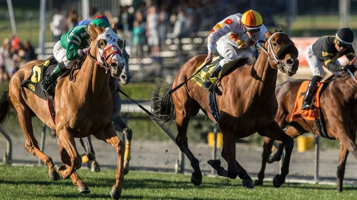 Camino 2nd in $200,000 Cal-Cup Stakes